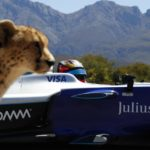 Formula E auto vs. cheetah — but which wins speed race?